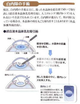 Scannable の文書 (2018-08-21 11_17_54).jpg